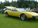 A Pantera with a V-8 engine! Nice fit!
