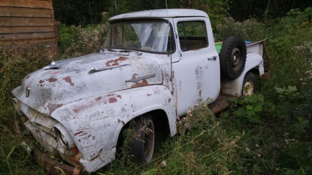 1956-ford-f100-alfie-3